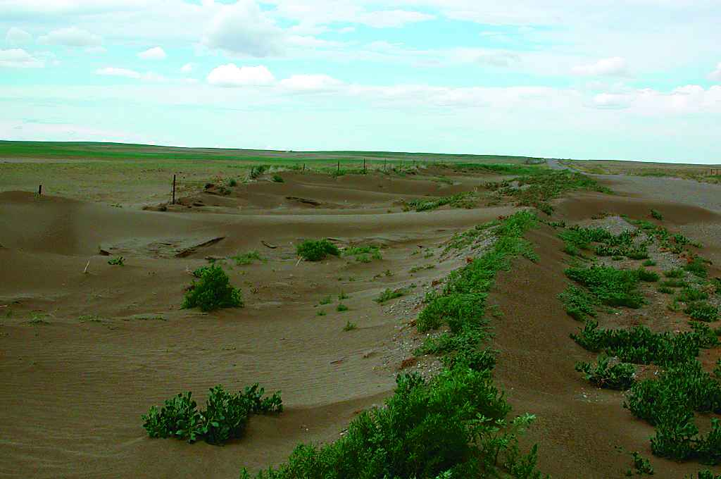 Soil erosion by wind in Alberta. [from Alberta Agriculture and Rural Development, http://bit.ly/1UU0cM0, used with permission]