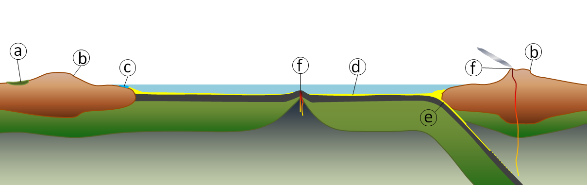 Geological component of the carbon cycle (a: carbon in organic matter stored in peat, coal and permafrost, b: weathering of silicate minerals converts atmospheric carbon dioxide to dissolved bicarbonate, c: dissolved carbon is converted to calcite by marine organisms, d: carbon compounds are stored in sediments, e: carbon-bearing sediments are transferred to longer-term storage in the mantle, and f: carbon dioxide is released back to atmosphere during volcanic eruptions.) [Steven Earle CC-BY 4.0]