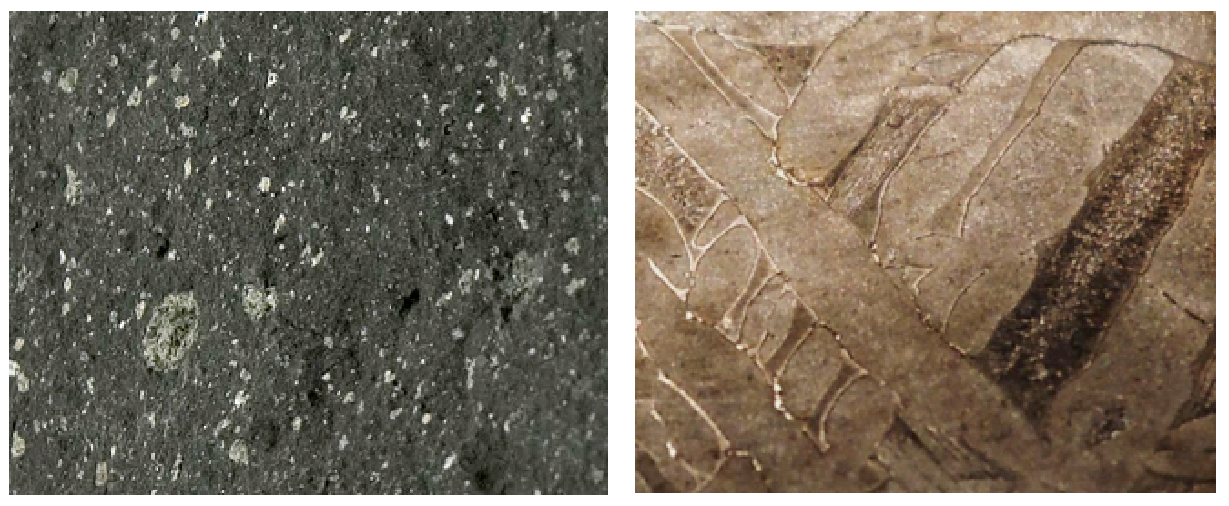 Left: a fragment of the Tagish Lake meteorite, discovered in 2000 on the ice of Tagish Lake, B.C. It is a stony meteorite that is dominated by mafic silicate minerals, and is similar in composition to Earth's mantle. Right: part of the Elbogen meteorite discovered in Germany around 1400 CE. It is an iron meteorite, similar in composition to Earth's core. Both samples are a few centimetres across. [left from: http://www.nasa.gov/centers/goddard/images/content/557996main_tagish-lake-meteorite.jpg] right from: http://upload.wikimedia.org/wikipedia/commons/d/dc/Elbogen_meteorite%2C_8.9g.jpg]