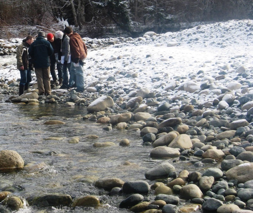 Hypothesizing about cobbles in a stream. [SE]