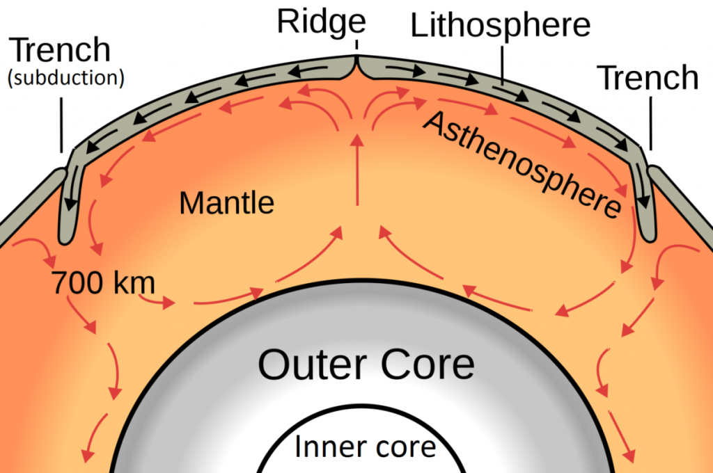 A model of convection within the Earth's mantle [http://upload.wikimedia.org/wikipedia/commons/thumb/2/27/Oceanic_spreading.svg/1280px-Oceanic_spreading.svg.png]