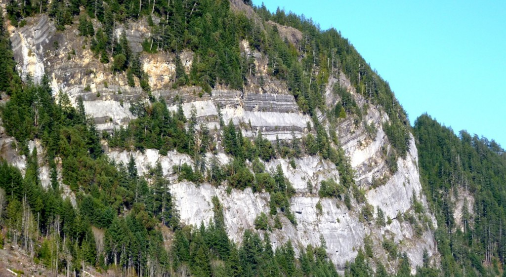 Figure 21.12 The Carboniferous Mt. Mark Formation on Vancouver Island is part of the Wrangellia Terrane, which arrived on the edge of North America during the Cretaceous. [SE]