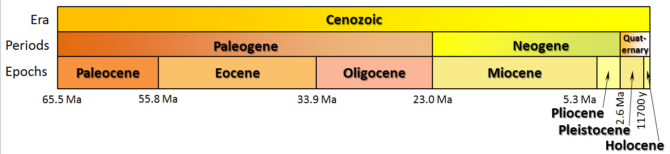 Figure 8.5 The periods (middle row) and epochs (bottom row) of the Cenozoic [SE]