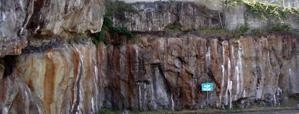 Cretaceous Nanaimo Group sandstone