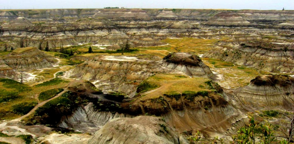 Figure 21.24 The Horseshoe Canyon Formation near Drumheller, Alberta [SE]