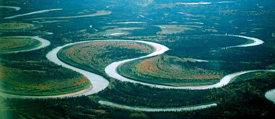 Figure 13.22 The meandering channel of the Nowitna River, Alaska. Numerous oxbow lakes are present and another meander cutoff will soon take place. [Oliver Kumis, http://commons.wikimedia.org/wiki/File:Nowitna_river.jpg]