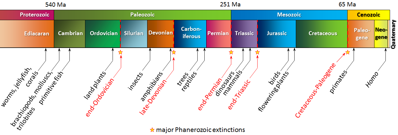 Figure 8.10 A summary of life on Earth during the late Proterozoic and the Phanerozoic. The top row shows geological eras, and the lower row shows the periods. [SE]