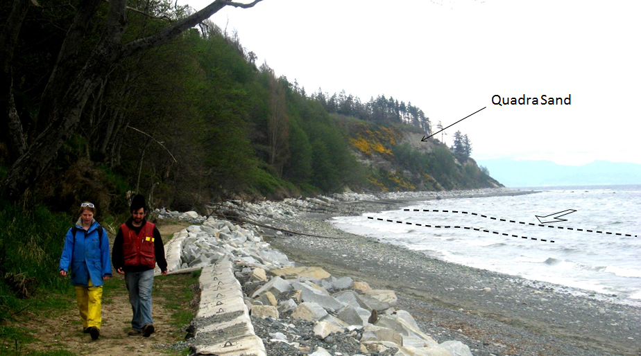 Figure 17.19 The Quadra Sand cliff at Comox, and the extensive concrete and rip-rap barrier that has been constructed to reduce erosion. Note that the waves (dashed lines) are approaching the shore at an angle, contributing to the longshore current. [SE]