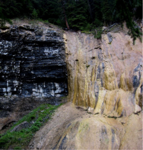 Figure 6.12 Tufa formed at a spring at Johnston Creek, Alberta. The rock to the left is limestone.