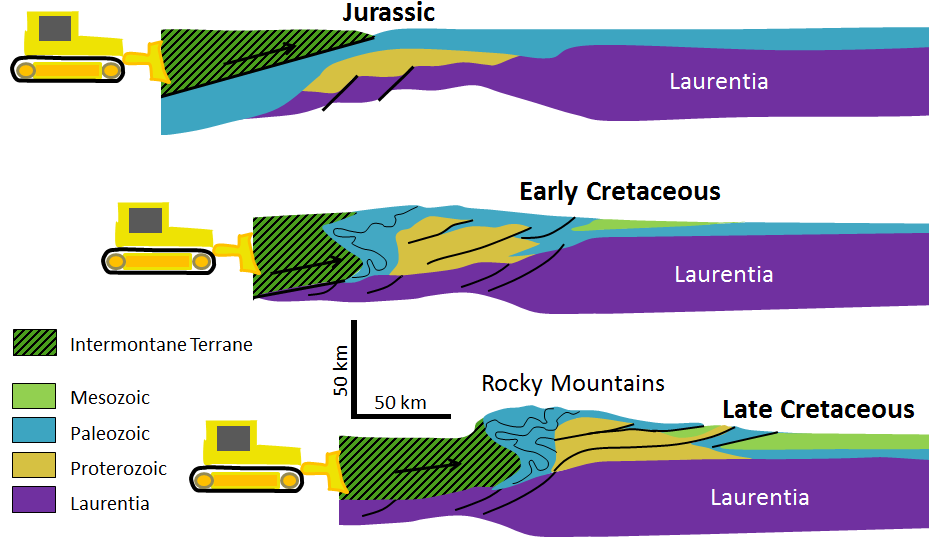 Figure 21.15 Cross-section of the accretion of the Intermontane Superterrane to the west coast of North America and the resulting compression, folding, and thrusting of North American sedimentary rocks. In the Late Cretaceous, it was the accretion of the Insular Superterrane, pushing against the Intermontane Superterrane, that did most of the work. [SE]