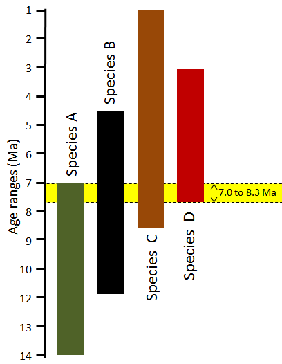 Figure 8.11 The application of bracketing to constrain the age of a rock based on several fossils. In this diagram, the coloured bar represents the time range during which each of the four species (A – D) existed on Earth. Although each species lived for several million years, we can narrow down the likely age of the rock to just 0.7 Ma during which all four species co-existed. [SE]