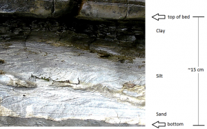Figure 6.22 A graded turbidite bed in Cretaceous Spray Formation rocks on Gabriola Island, B.C. The lower several centimetres of sand and silt probably formed over the duration of an hour. The upper few centimetres of fine clay may have accumulated over a few hundred years.