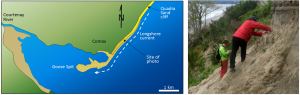 Figure 17.18 The formation of Goose Spit at Comox on Vancouver Island. The sand that makes up Goose Spit is derived from the erosion of Pleistocene Quadra Sand (a thick glaciofluvial sand deposit, as illustrated in the photo on the right). [SE]