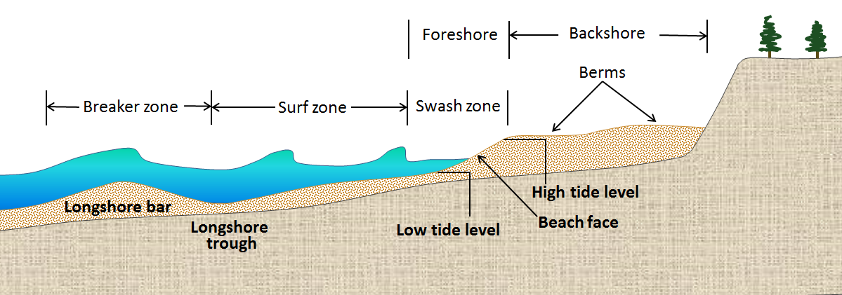 Figure 17.16 The components of a sandy marine beach [SE]