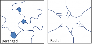 Figure 13.8 Left: a typical deranged pattern; right: a typical radial drainage pattern developed around a mountain or hill. [SE]