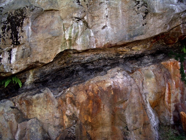 (b) Two separate layers of fluvial sandstone with a thin (approx. 75 cm) coal seam in between. Pender Formation in Nanaimo.