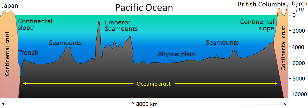 Figure 18.3 The generalized topography of the Pacific Ocean sea floor between Japan and British Columbia. The vertical exaggeration is approximately 200 times. [SE]