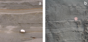 Figure 16.35 Examples of glacial sediments formed in quiet water: a: glaciolacustrine sediment with a drop stone, Nanaimo, B.C.; and b: a laminated glaciomarine sediment, Englishman River, B.C. Although not visible in this photo, the glaciomarine sediment has marine shell fossils. [SE]