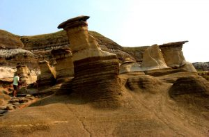 Figure 5.1 The Hoodoos, near Drumheller, Alberta, have formed from the differential weathering of sedimentary rock that was buried beneath other rock for close to 100 Ma [SE photo]