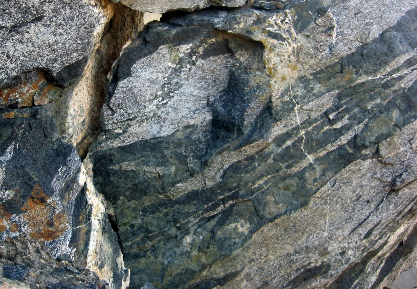Photograph of Metamorphic rock (gneiss) of the Okanagan Metamorphic and Igneous Complex at Skaha Lake, BC. The dark bands are amphibole-rich, the light bands are feldspar-rich.