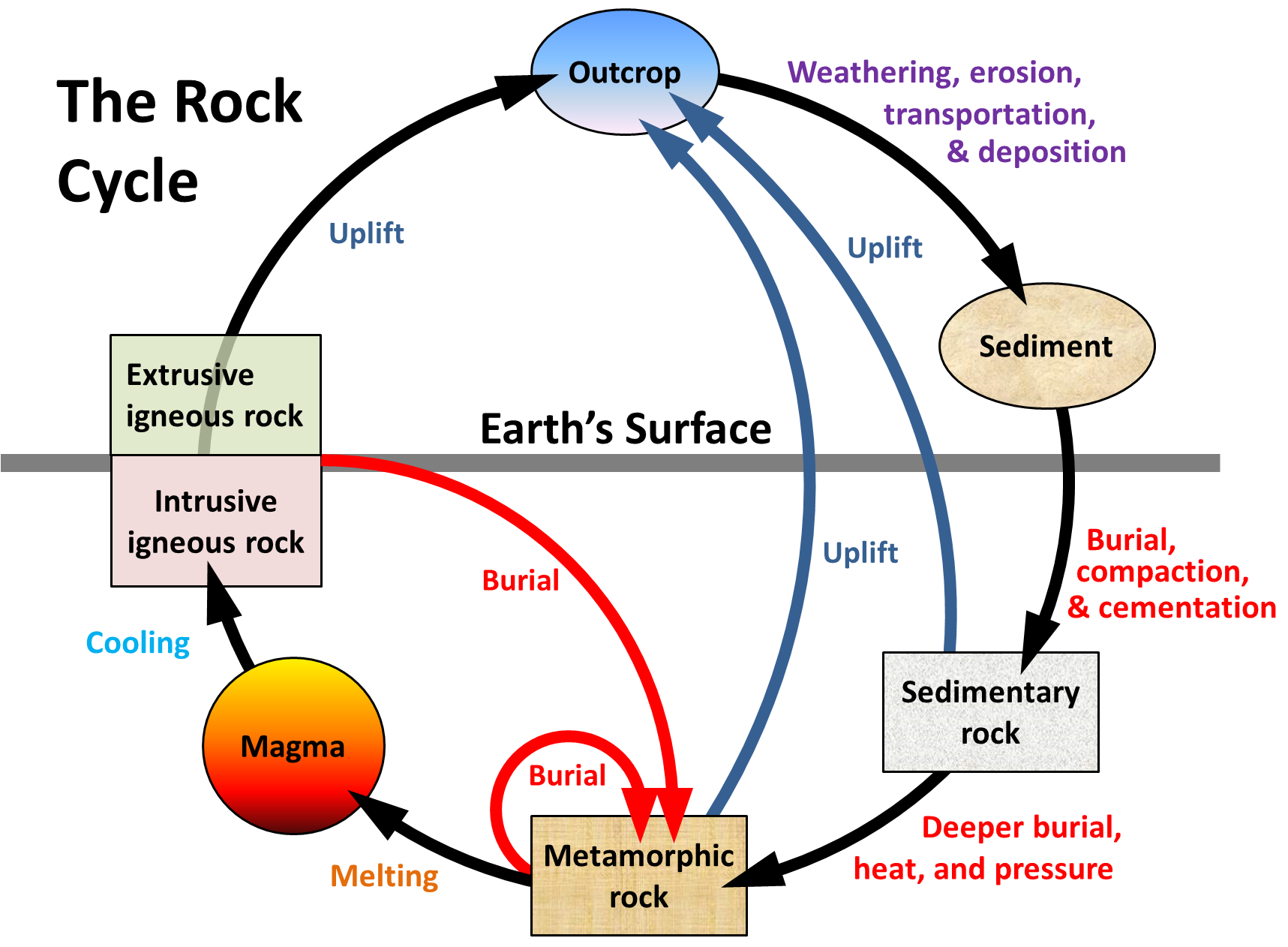 Figure 7.2 The rock cycle. The processes related to metamorphic rocks are at the bottom of the cycle. [SE ]