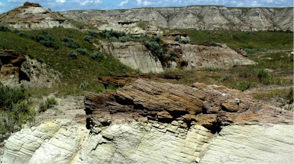 Figure 6.1 The Cretaceous Dinosaur Park Formation at Dinosaur Provincial Park, Alberta, one the world's most important sites for dinosaur fossils. The rocks in the foreground show cross-bedding, indicative of deposition in a fluvial (river) environment