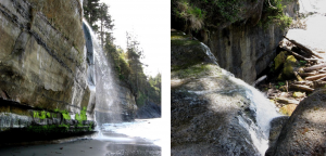 Figure 13.11 Two streams with a lowered base level on the Juan de Fuca Trail, southwestern Vancouver Island. [SE]