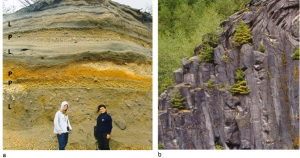 Figure 4.13 Mt. St. Helens volcanic deposits: (a) lahar deposits (L) and felsic pyroclastic deposits (P) and (b) a columnar basalt lava flow. The two photos were taken at locations only about 500 m apart. [SE]