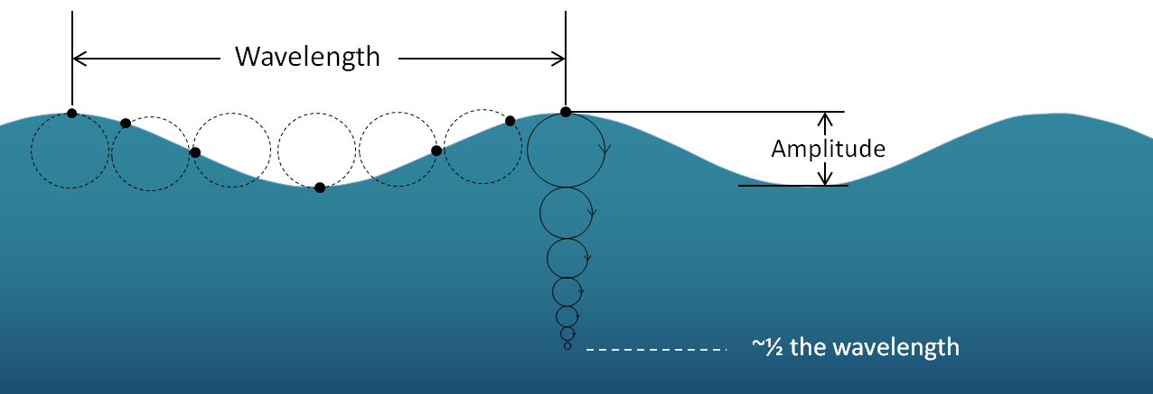 Figure 17.3 The orbital motion of a parcel of water (black dot) as a wave moves across the surface. [SE]
