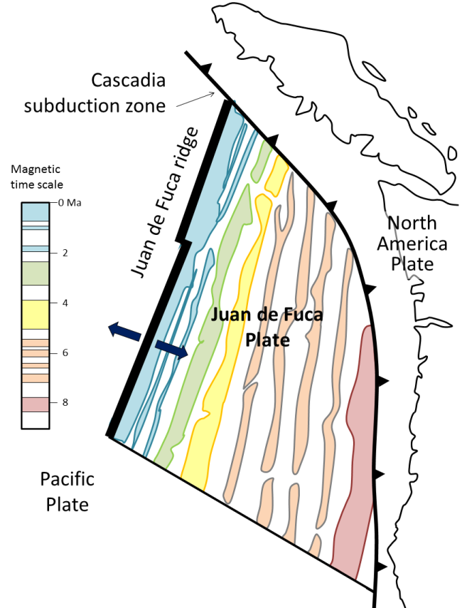 Figure 8.21 The pattern of magnetism within the area of the Juan de Fuca Plate, off the west coast of North America. The coloured shapes represent parts of the sea floor that have normal magnetism, and the magnetic time scale is shown using the same colours. The blue bands represent Brunhes, Jaramillo, and Olduvai, the green represents Gauss, and so on. (Note that, in this diagram, sea-floor magnetism is only shown for the Juan de Fuca Plate, although similar patterns exist on the Pacific Plate.) [SE]