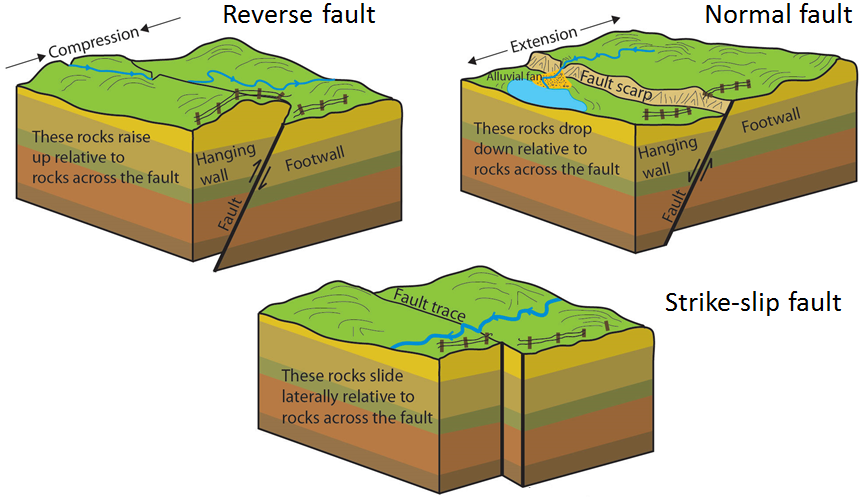 Figure 12.13  Depiction of reverse, normal and strike-slip faults.  Reverse faults happen during compression while normal faults happen during extension.  Most strike-slip faults are related to transform boundaries.  [SE after: http://www.nature.nps.gov/geology/education/images/GRAPHICS/fault_types_2.jpg]