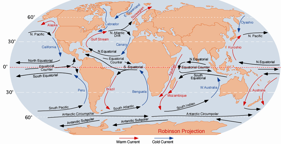 Figure 18.15 Overview of the main open-ocean currents. Red arrows represent warm water moving toward colder regions. Blue arrows represent cold water moving toward warmer regions. Black arrows represent currents that don't involve significant temperature changes. [From: https://upload.wikimedia.org/wikipedia/commons/9/9b/Corrientes-oceanicas.png]