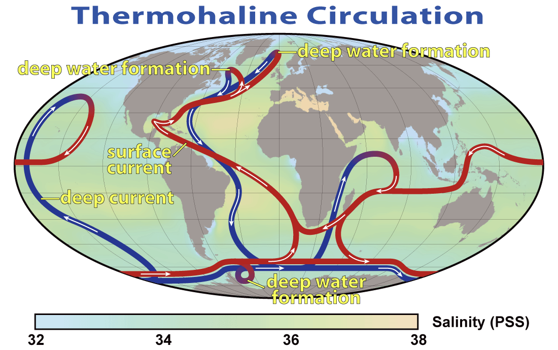 Figure 18.18 The thermohaline circulation system, also known as the Global Ocean Conveyor [from NASA at: https://en.wikipedia.org/wiki/Thermohaline_circulation#/media/File:Thermohaline_Circulation_2.png]