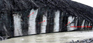 Figure 16.16 Thrust faults at the leading edge of the Athabasca Glacier, Alberta. The arrows show how the trailing ice has been thrust over the leading ice. (The dark vertical stripes are mud from sediments that have been washed off of the lateral moraine lying on the surface of the ice.) [SE]