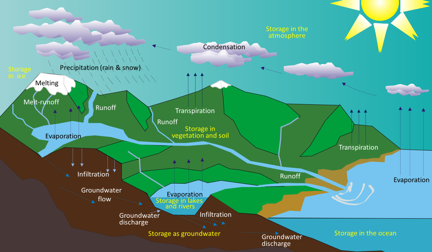 Figure 13.2 The various components of the water cycle. Black or white text indicates the movement or transfer of water from one reservoir to another. Yellow text indicates the storage of water. [SE after Wikipedia: http://upload.wikimedia.org/wikipedia/commons/5/54/Water_cycle_blank.svg]