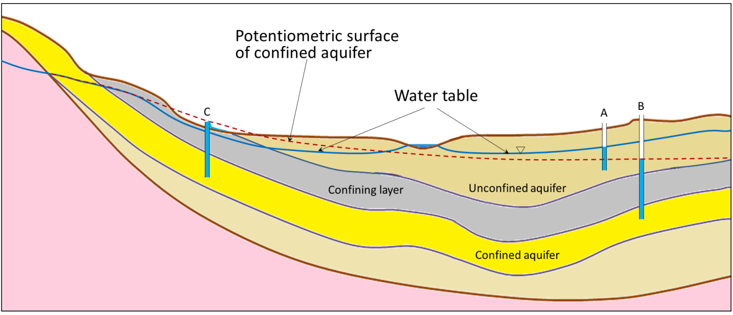 Figure 14.6 A depiction of the water table and the potentiometric surface of a confined aquifer. [SE]