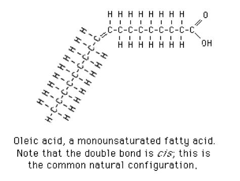 Oleic acid. Long description available.