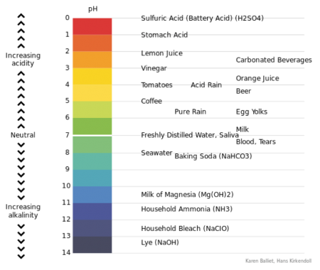 Scale showing the pH levels of common products. Long description available.