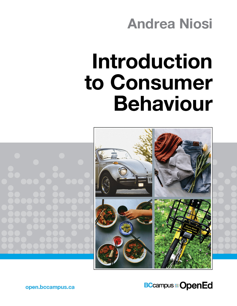 Cover image for Introduction to Consumer Behaviour