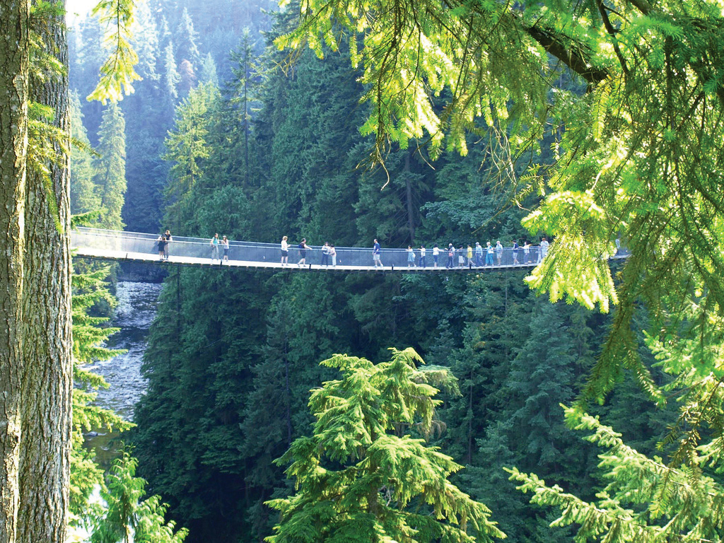People on the Capilano Suspension Bridge