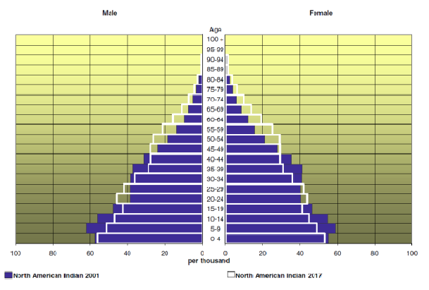Two population pyramids, one overlapping the other, for the Canadian Aboriginal population. The graph is divided to show separate data for male and female.