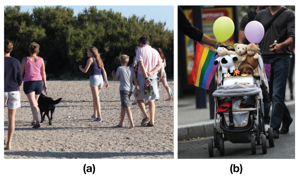 Photo (a) shows a family walking with a dog on a beach; Photo (b) shows a child in a stroller being pushed by two men.