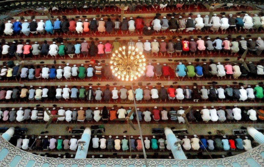 Pictured from above, lines of Muslim men kneel in prayer.