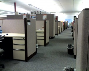 A row of individual work cubicles.