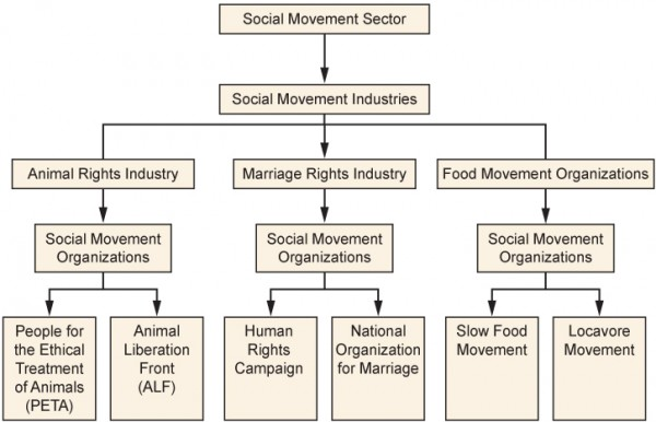 The Social Movement Sector includes many industries and organizations. Long description available.