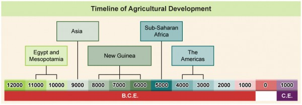 A table showing the time period of agricultural development for different cultures.