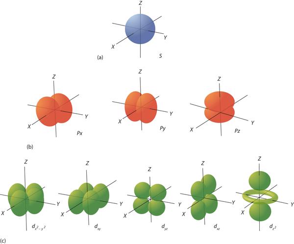 Electron Orbitals Quantum Numbers for El...