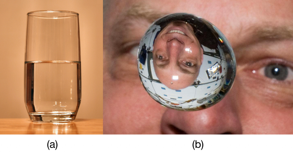 "(a) A liquid fills the bottom of its container as it is drawn downward by gravity and the particles slide over each other. (b) A liquid floats in a zero- gravity environment. The particles still slide over each other because they are in the liquid phase, but now there is no gravity to pull them down. Source: ""Glass of Water"" by Derek Jensen is in the public domain; ""Clayton Anderson zero g"" s in the public domain because it was solely created by NASA."