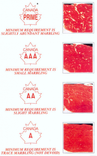 Figure 16 A grade marbling chart. Courtesy Beef Grading Centre