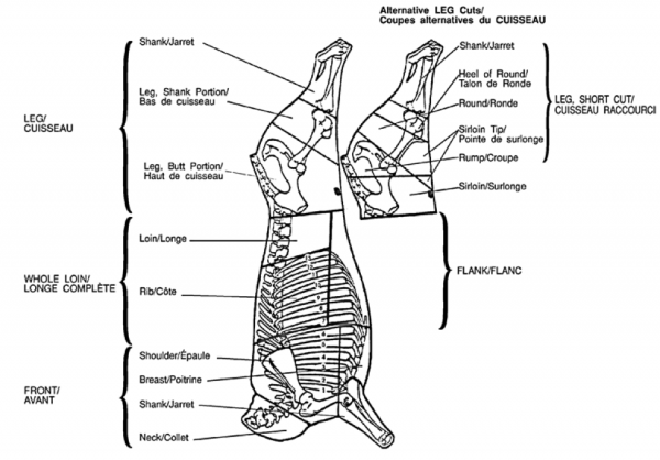 primal, sub-primal, and secondary cuts – meat cutting and ... whole leg diagram twisted leg diagram